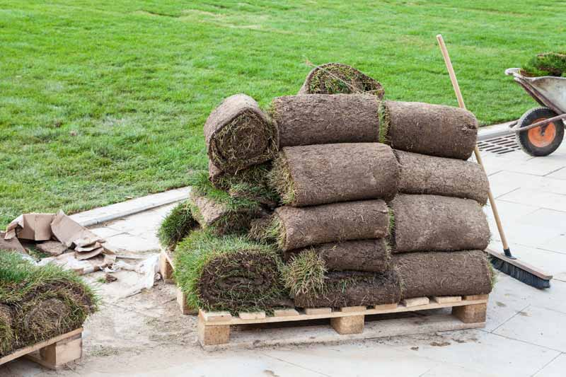 Image result for Garden Turf Buying Tips