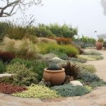 10 Tips For Landscape Design In Dry Areas